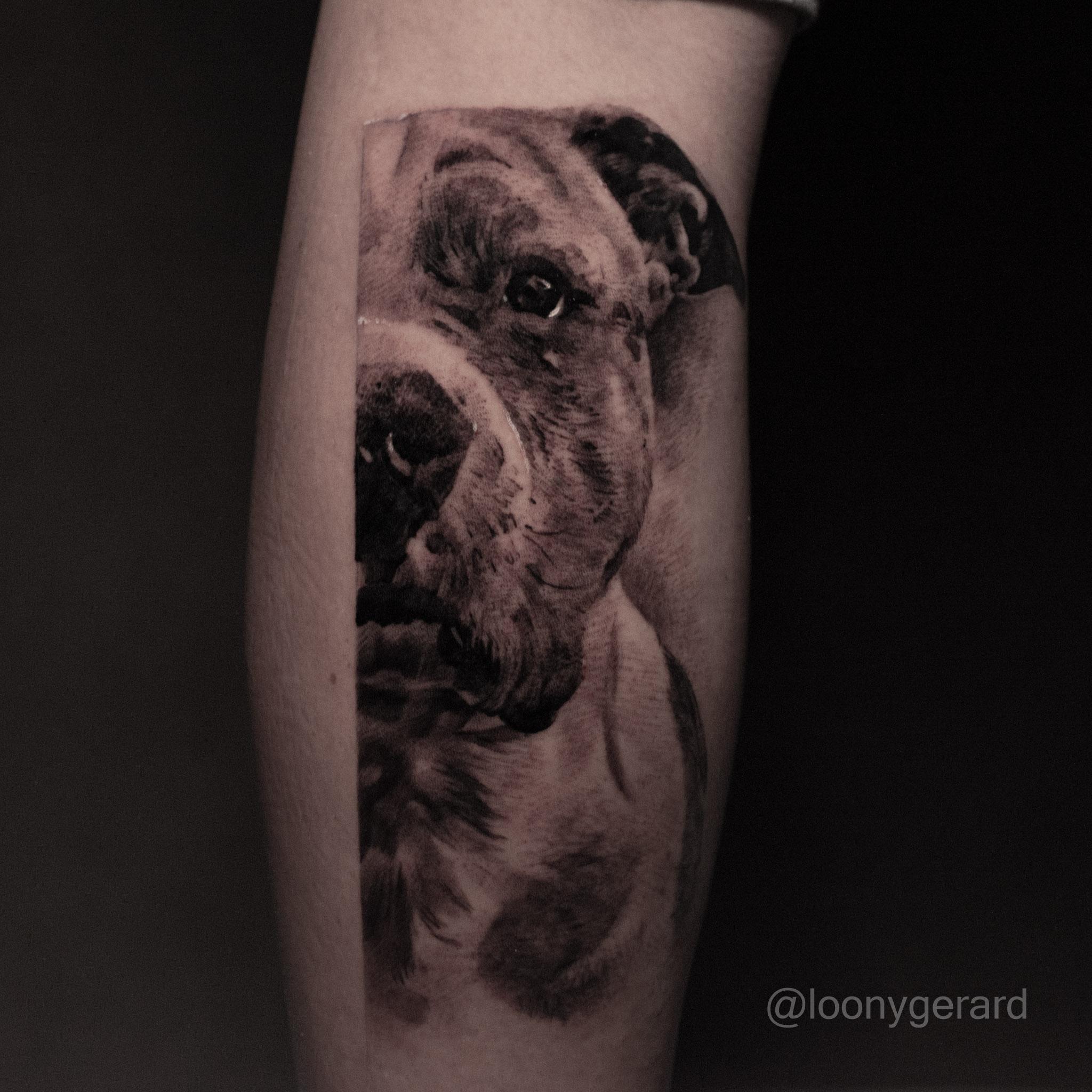 Inksearch tattoo Zmora