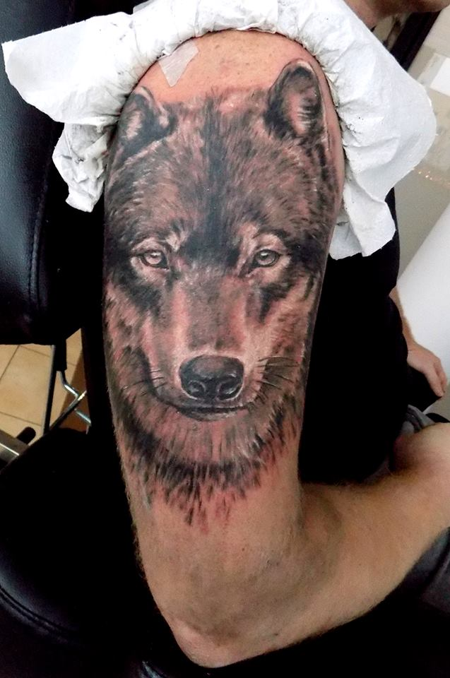 Inksearch tattoo Artio Tattoo