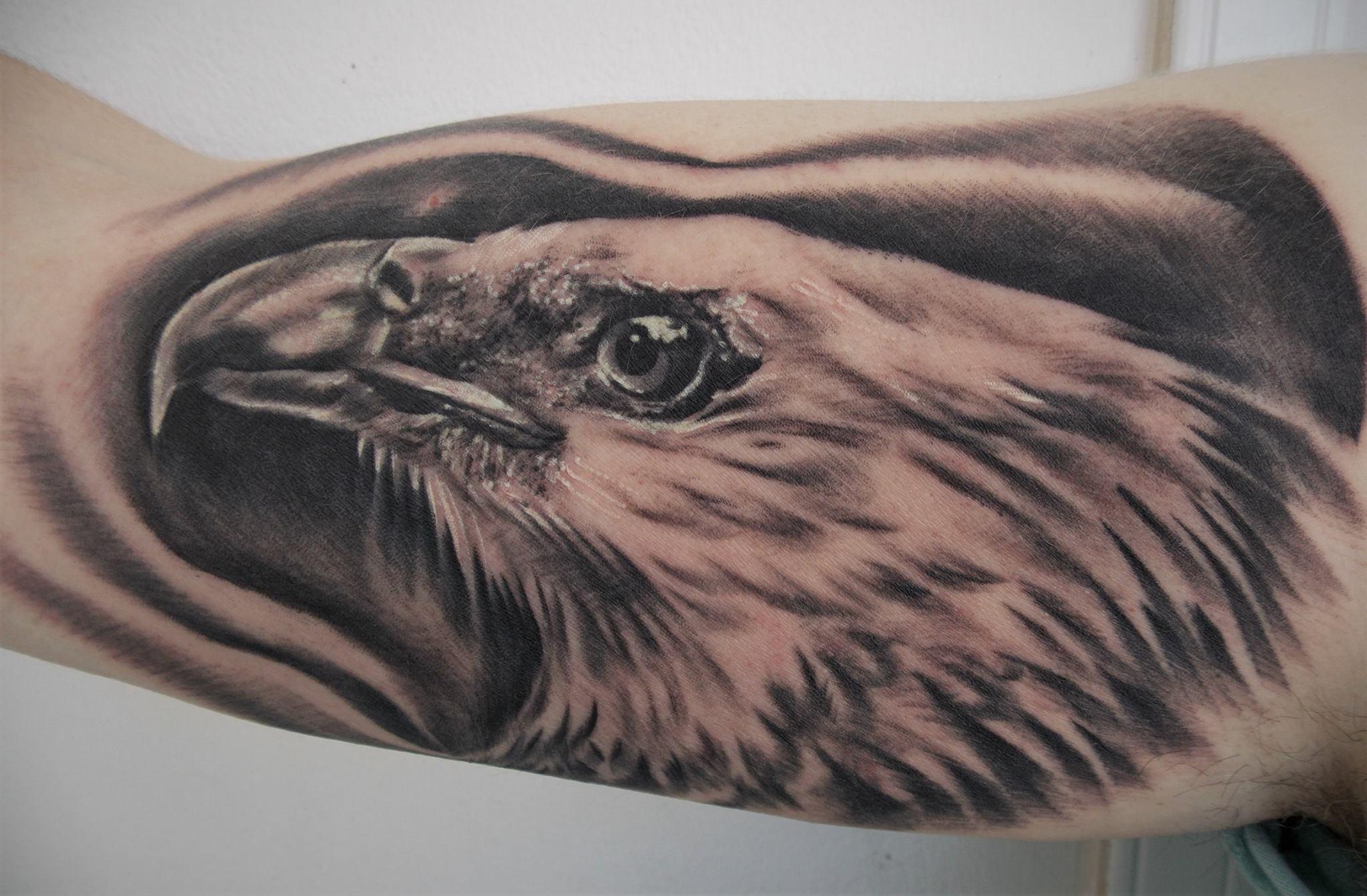 Inksearch tattoo Morgaine Raven