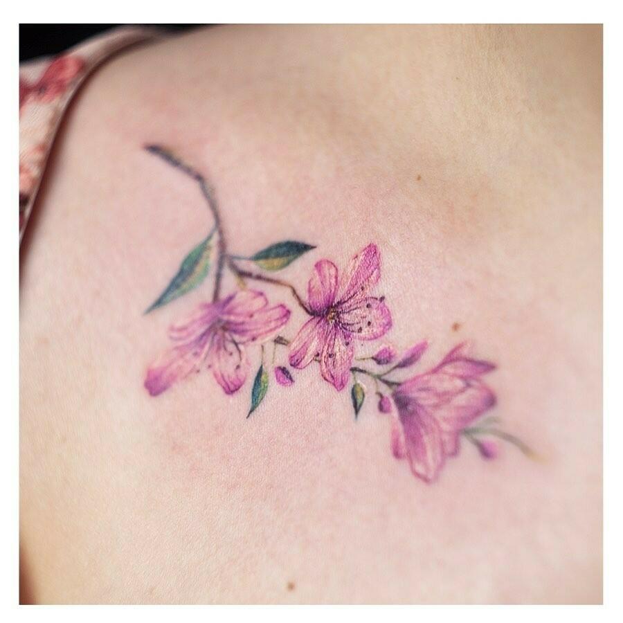 Inksearch tattoo Bez i Agrest