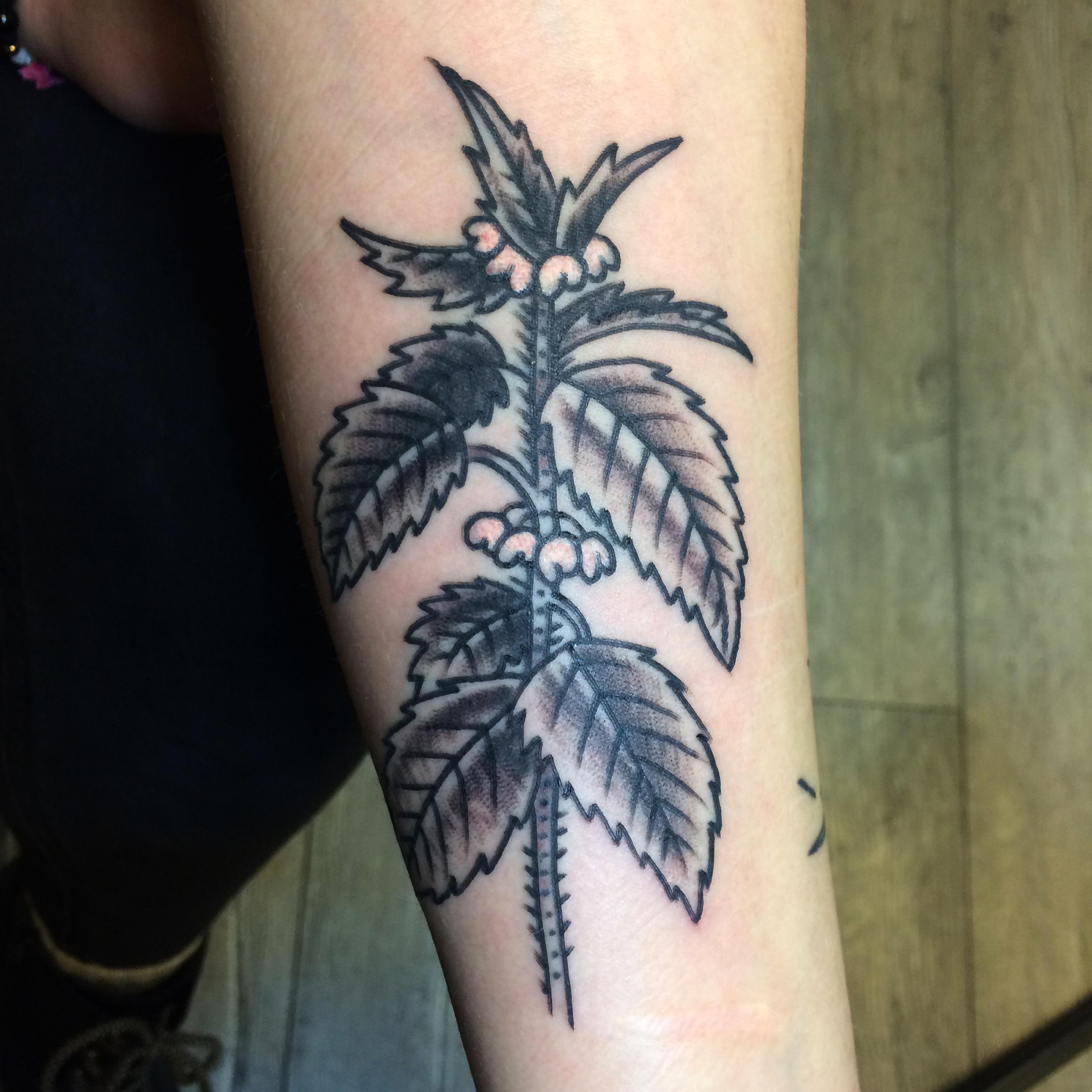 Inksearch tattoo Renton Stelmach