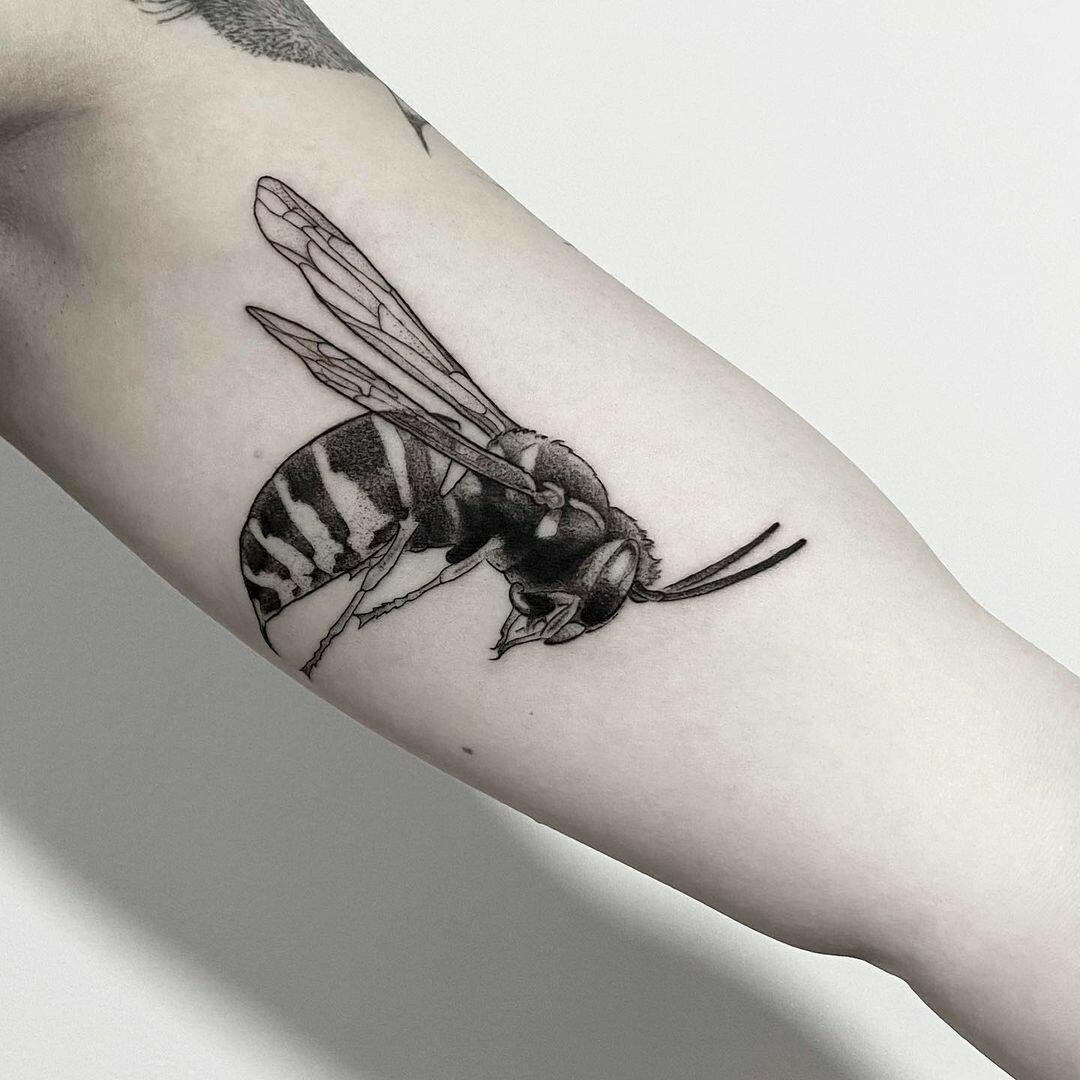 Inksearch tattoo Karol Sutura