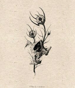 Blackcrowtattoo inksearch tattoo